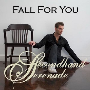 gambar Secondhand Serenade Fall For You image