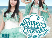 [normal] Pareo FRONT REV14032015