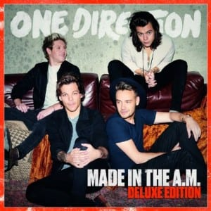 Lirik Lagu One Direction End Of The Day